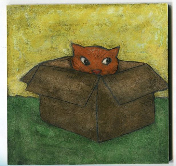 cat in a box013